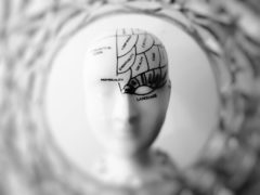 Blog Its your brain - conceptinc